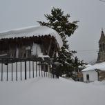 Nevadona Llanos. Feb-2015 (2)